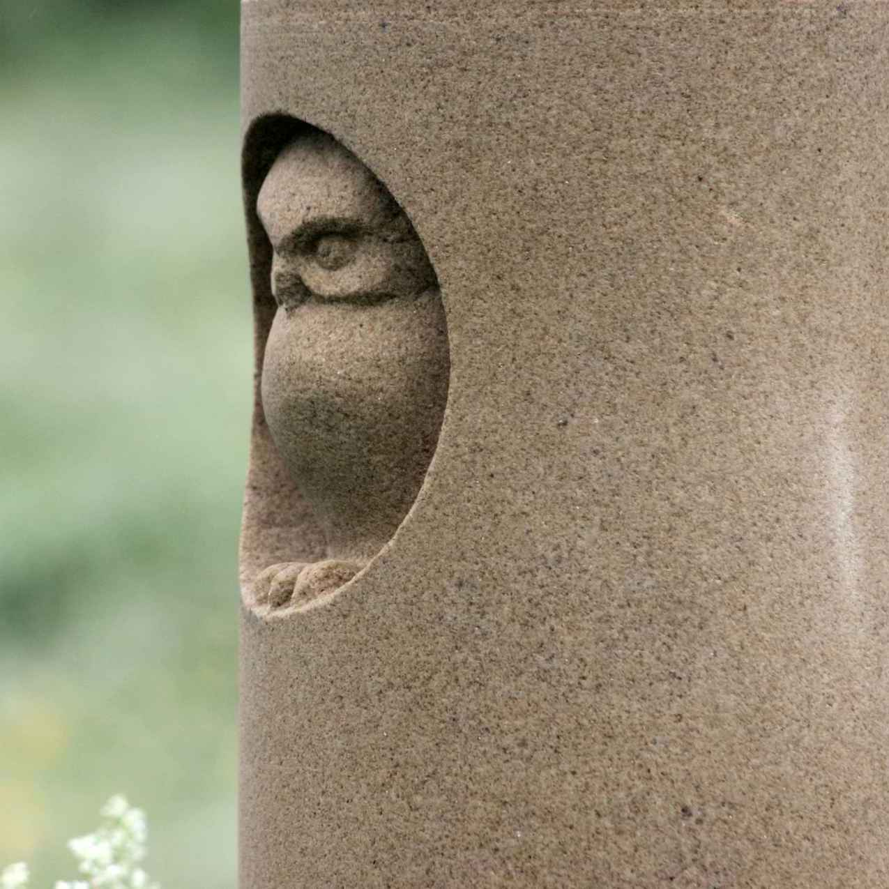 Owl in hollow