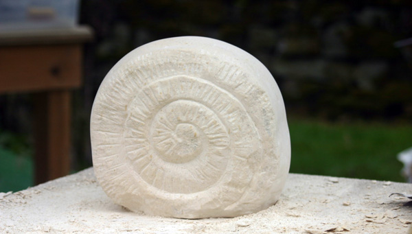Ammonite carving