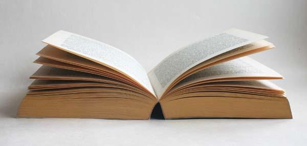 A Year in Books