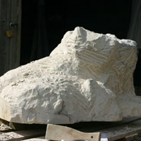 Carving 21
