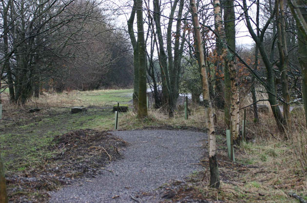 Sculpture Trail start of the wooded area