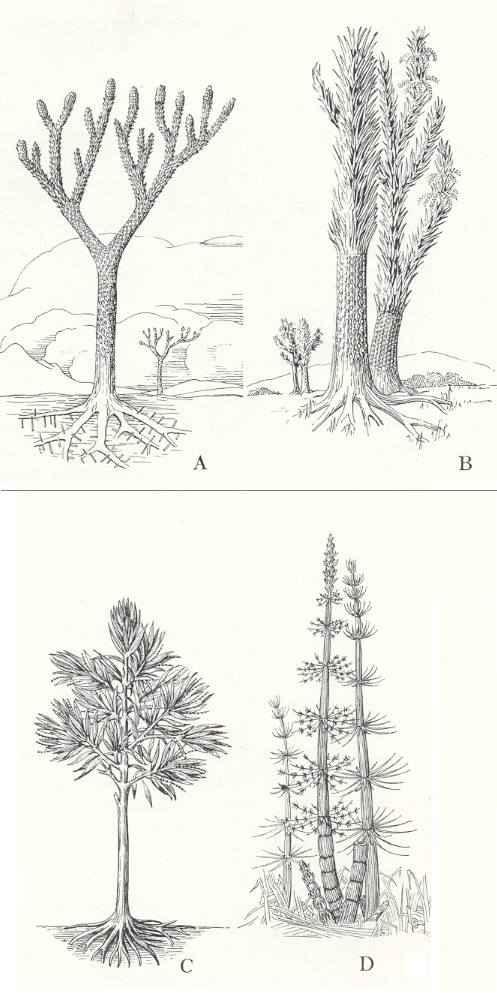 plant sculpture ideas