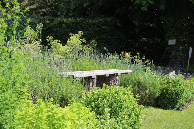 Bench surrounded by fragrant planting in the garden at Nunnington Hall