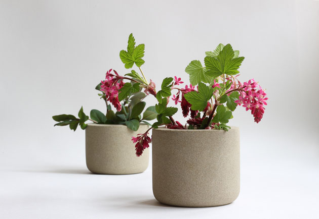 Spring cuttings in stone pots