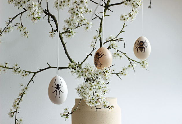 Easter eggs and blossom