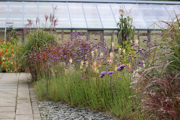 Wildlife area RHS Garden Harlow Carr