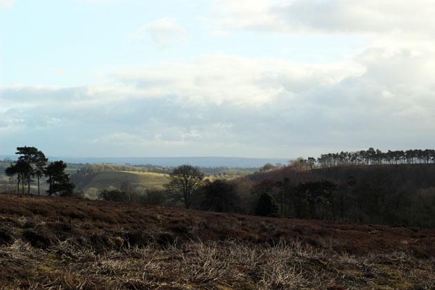View from Lastingham Ridge