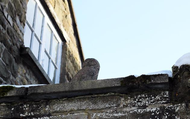 Owl sculpture at Lastingham Grange, Lastingham
