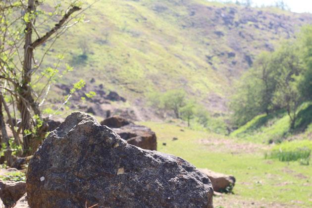 blocks of old weathered stone