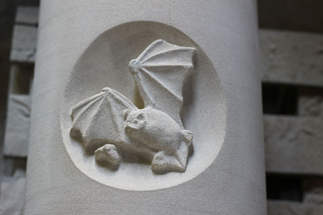 Common Pipistrelle bat carved in stone
