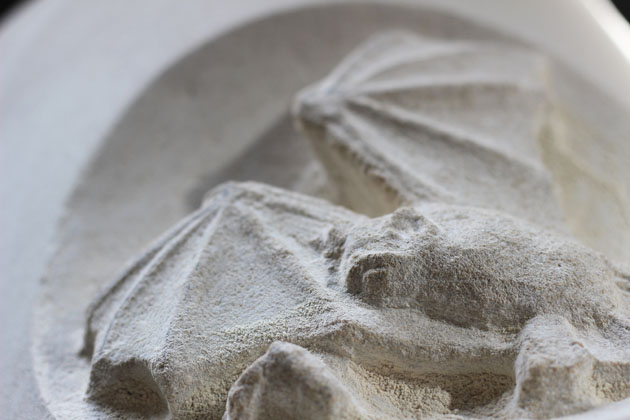 A bat carved in stone