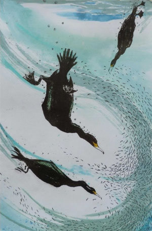Divers by Louise Scammell