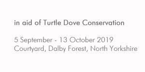 Turtle Dove sculpture exhibition
