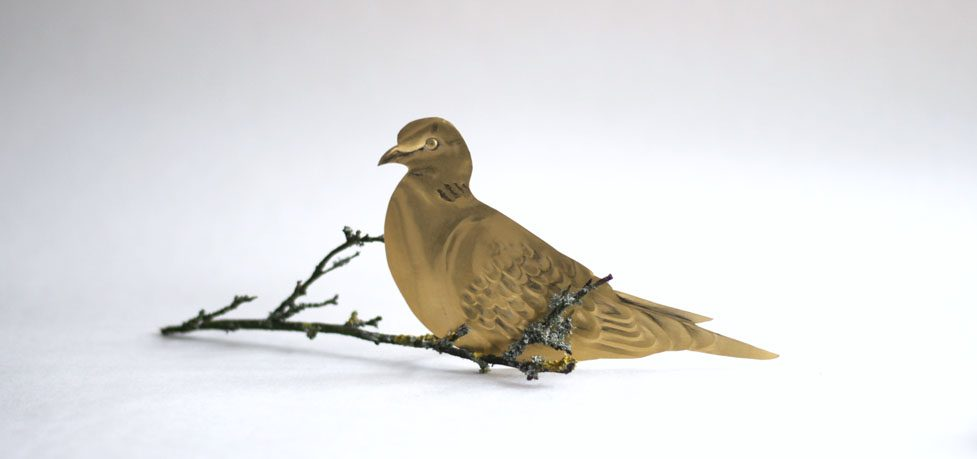 Turtle Dove Project Exhibition and Auction