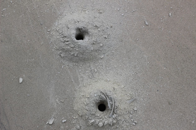drill holes in stone