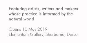 Elementum Gallery opening exhibition