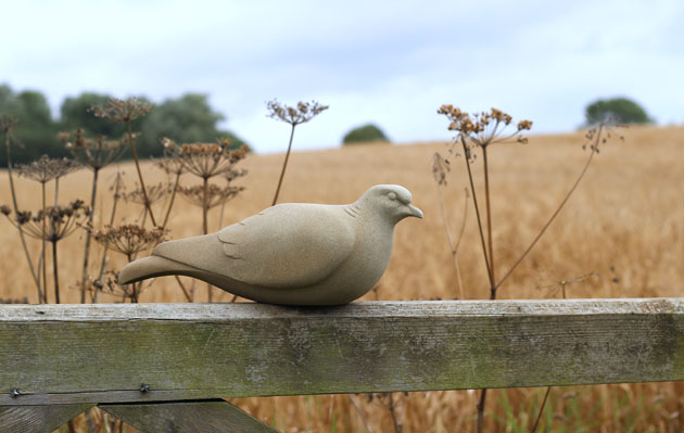 Turtle Dove Sculpture