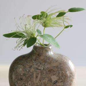 Stem vase in Swaledale Fossil Marble