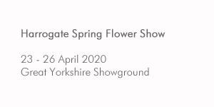 Harrogate Spring Flower Show 2020