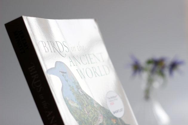 Birds in the Ancient World by Jeremy Mynott