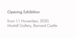 Mortall Gallery Barnard Castle