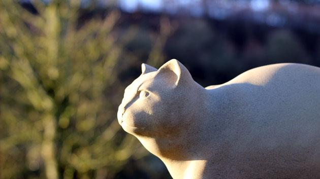 cat sculpture head detail
