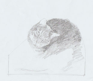 sketch for cat sculpture