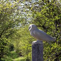 Short-eared Owl sculpture