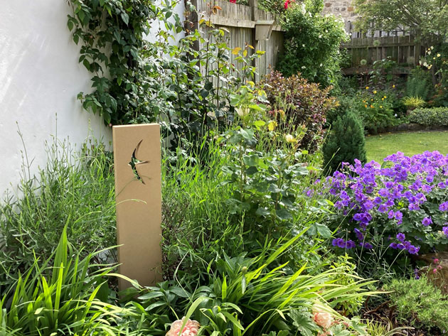Swift Stone in the garden