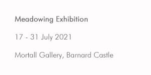 Meadowing exhibition
